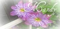 Mandyflowersignature